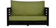 Jinjer Two Seater Sofa in Green Colour by ARRA