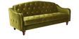 Jodhpuri Sofa Bed in Green Colour by Furny