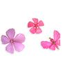 Kanhai Pink Acrylic Spring Quirky Fridge Magnet - Set of 3