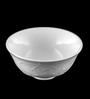 Lazzaro Ivy Bone China Bowl - Set of 2