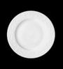 Lazzaro Ivy White Porcelain Plate - Set of 2