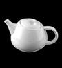 Lazzaro Lovely look White Bone China 1040 ML Tea and Coffee Pot