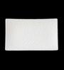 Lazzaro Westwood White Bone China Platter