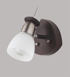 Learc Designer Lighting SL10 Single Shade Downlighter Wall Spot Light