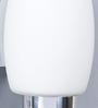 LeArc Designer Lighting Chrome Mild Steel Upward Wall Light