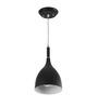 LeArc Designer Lighting HL3773 Black Pendant