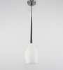 Learc Designer Lighting Nickel Mild Steel Hl3523-1 Pendant