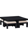 Regina Coffee Table Set in Espresso Walnut Finish by Woodsworth