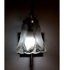 Lime Light Transparent Glass and Wood Wall Mounted Light