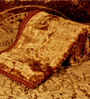 Little India Browns Solids Microfibre Queen Size Blanket 1 Pc