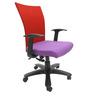 Marina WW Office Ergonomic Chair in Red & Purple Colour by Chromecraft