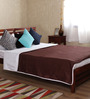 Mark Home Brown Cotton Solid 100 x 90 Inch Double Bed Dohar