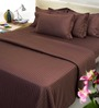 Mark Home Charm Brown Cotton Bed Sheet