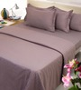Mark Home Tan Brown Cotton Bed Sheet (with Pillow Covers) - Set of 3