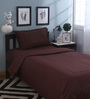 Mark Home Delight Brown Cotton Bed Sheet