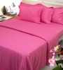 Mark Home Hot Pink Cotton Bed Sheet