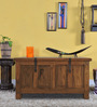Hudson Trunk in Natural Finish by Woodsworth