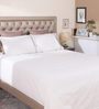 Milano Home Ivory Cotton Queen Size Bedsheet