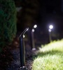 Mr Beams MB592 Outdoor Wireless Motion Sensor 80-lumens LED Path Light with Ground Stakes, Dark Brown,2-Pack