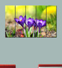 Multiple Frames Printed Violet Flowers Art Panels like Painting - 5 Frames