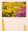 Multiple Frames Printed Yellow Red Flower Fields Panels like Painting - 5 Frames