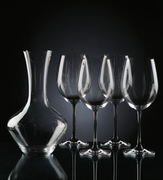 Nachtmann Decanter with Wine Glass 5-piece Combo Set