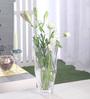 Nachtmann Transparent Glass Ocean Vase