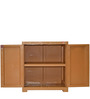 Novelty Compact Storage Cabinet in Wood colour by Cello