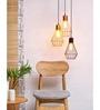 Orange Tree Black Iron Cora Hanging Lamp
