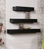 Orion Contemporary Wall Shelves Set of 3 in Black by CasaCraft