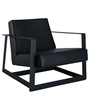Palecio Arm Chair with Metal Frame in Black Colour by CasaCraft