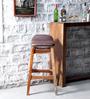 Kennewick Bar Stool in Natural Sheesham Wood Finish by Woodsworth