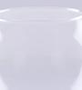 Pasabahce Transparent Glass Flora Round Vase