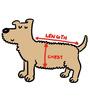 Pawzone Rain Coat for Dog in Orange (Size -20)
