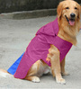 Pawzone Rain Coat for Dog in Purple (Size -18)