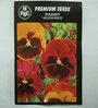 PBC  Pansy Medium Mixed Premium Seeds (Pack of 100 Seeds)