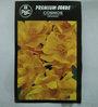 PBC Cosmos Orange Premium Seeds (Pack of 50 Seeds)