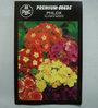 PBC Phlox Alaska Mixed Premium Seeds - Pack of 2 (200 Seeds)
