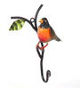 Peacock Life Orange Iron Painted Bird American Robin Key Holder