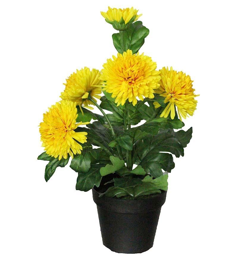Pollination yellow marigold artificial flower plant by pollination online artificial plants - House flower plants ...