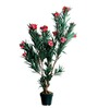 Pollination Pink Polyester Big Oleander Artificial Plant with Pot