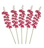 Pollination Dark Pink Orchid Artificial Flowers - Set of 5