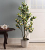 Pollination White Polyester Frangipani Artificial Plant with Pot