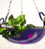 PoppadumArt Kadhai Planter in Purple