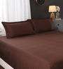 Portico New York Browns Solids Cotton Queen Size Bed Sheets - Set of 3