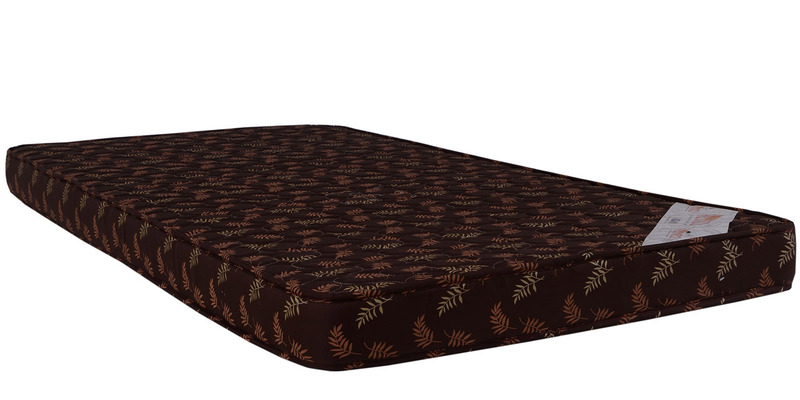 Economical 4 Inches Coir Single Mattress in Multicolour by Springtek Ortho Coir