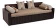 Aster Elegant Sofa Cum Bed by ARRA