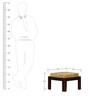 Pullman Sheesham Wood Coffee Table Set in Provincial Teak Finish by Woodsworth