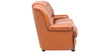 Queen Three Seater Sofa in Tan Brown Colour by Star India