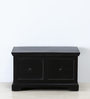 Queensberry Trunk in Espresso Walnut Finish by Amberville